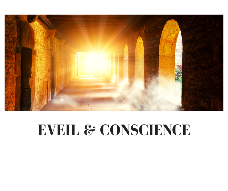 Blog-Veronique-jacquemoud-eveil-conscience-inspiration